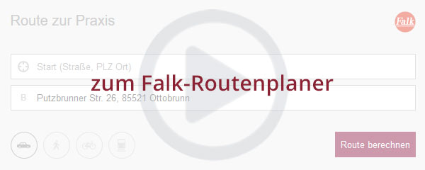 Preview Falk-Routenplaner